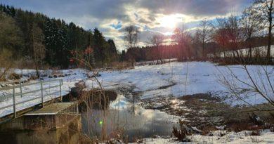 Wald-Teich-Wanderung im Schnee